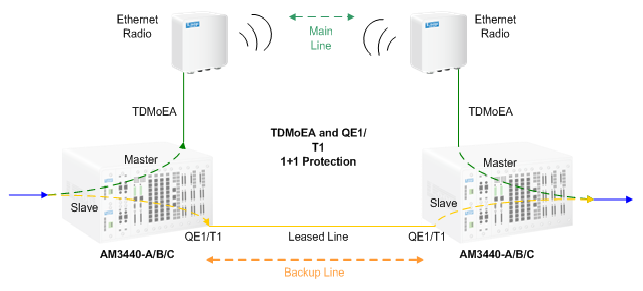 TDMoEA and QE1/T1 Protection
